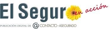 EL SEGURO EN ACCIÓN