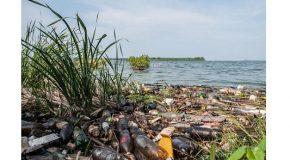 Hay que remediar los daños ambientales.