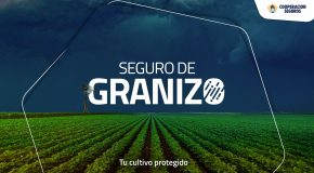 COOPERACIÓN SEGUROS REGRESA A LA COMERCIALIZACIÓN DE GRANIZO